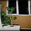 Аренда квартир в Самаре фото