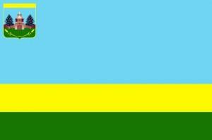 Флаг Борского самарской области фото