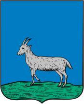 Прежний самарский герб отличался от нынешнего герба Самары