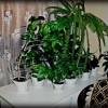Продажа и покупка квартир в Самарской области фото