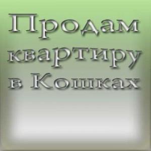 Продам квартиру в Кошках самарской области фото