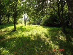Продам земельный участок Самара, б/о Полет фото