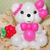 Фото объявления - Шарики с гелием недорого! Фигурки и цветы из шаров!
